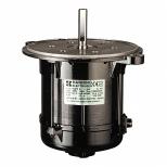 الکتروموتور مشعلی گازی و گازوئیلی 450 وات الکتروژن سری HN
