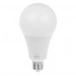 لامپ حبابی 20 وات مهتابی بروکس