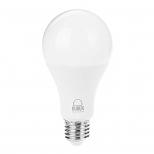 لامپ حبابی 15 وات مهتابی بروکس