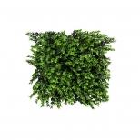دیوار سبز مصنوعی مدل پونه رنگ سبز و سیاه مانا چمن