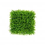 دیوار سبز مصنوعی مدل آناناسی رنگ سبز مانا چمن