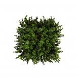 دیوار سبز مصنوعی مدل شمشاد سبز و مشكي سایز بزرگ مانا چمن